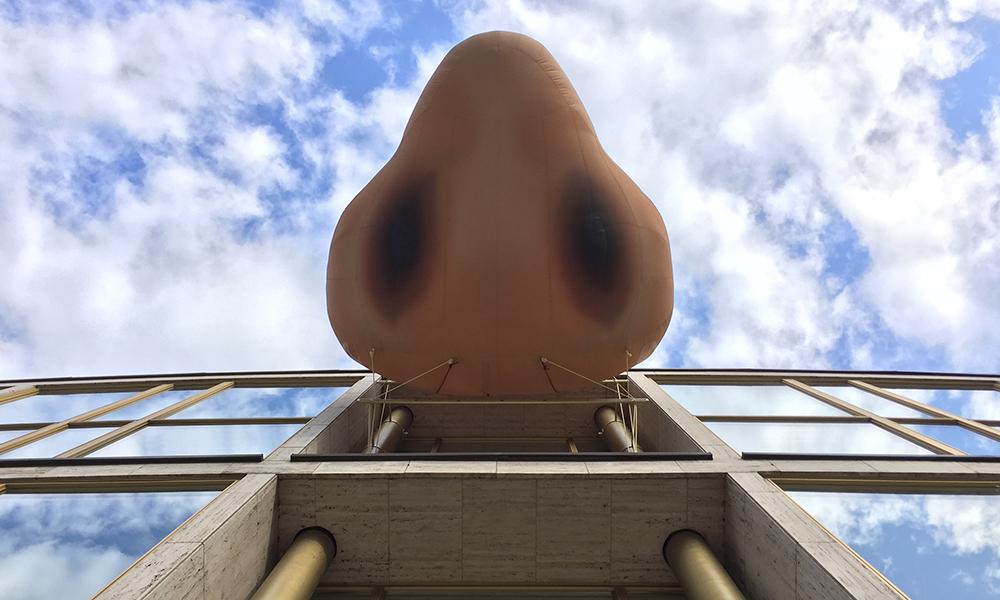 Die Nase am Haus